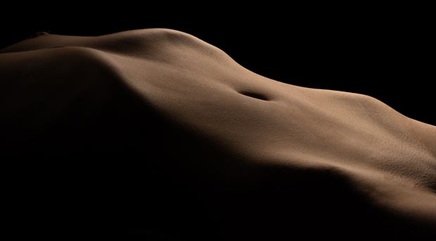 desert flower erotic photo by photographer jim setzer