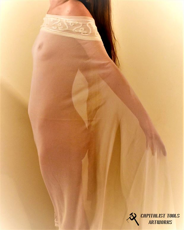 dianea sheer artistic nude photo by photographer capitalist tools