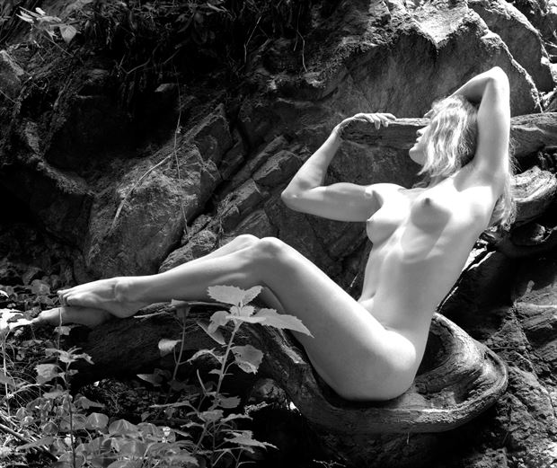 dianna 1 artistic nude photo by photographer steve anchell