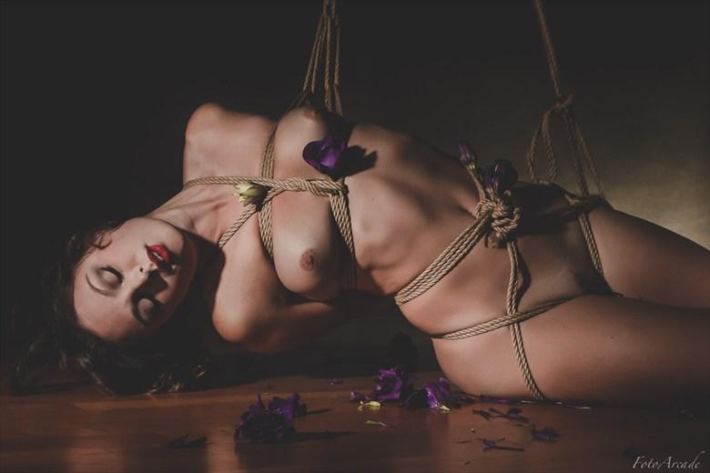 draped love Artistic Nude Photo by Photographer FotoArcade