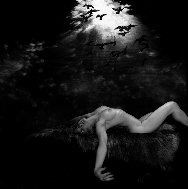 dreamer sensual photo by artist jean jacques andre