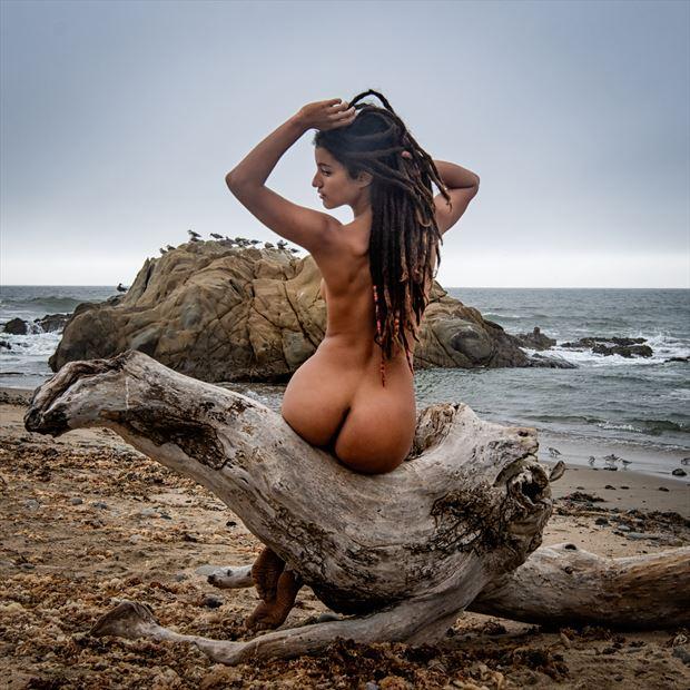 driftwood venus artistic nude photo by photographer randall hobbet