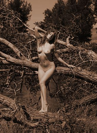 edness kimball wilkins state park wy artistic nude photo by photographer ray valentine