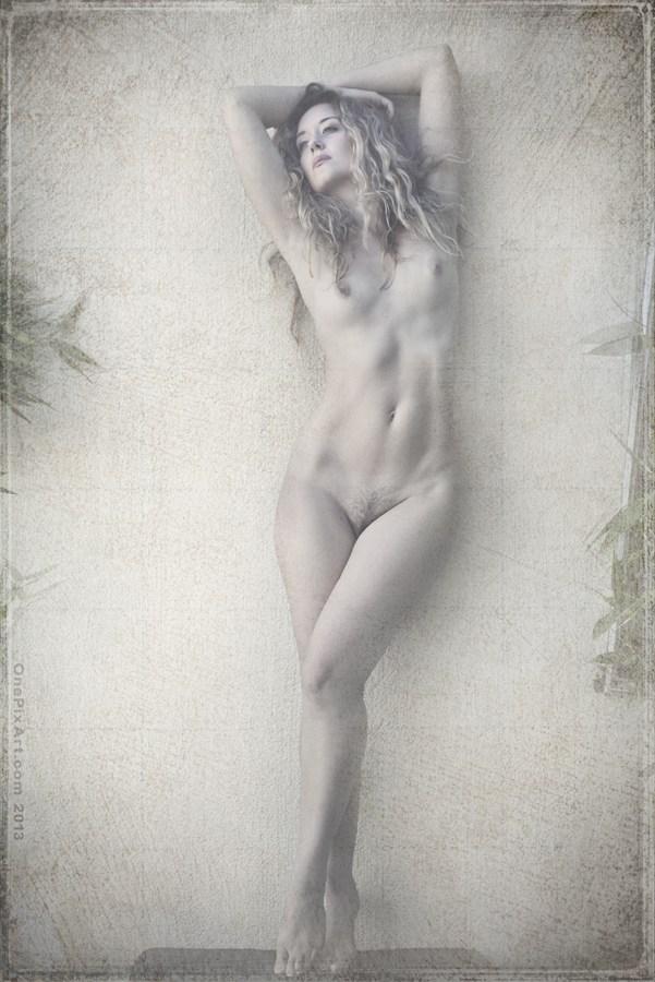 ella  Artistic Nude Artwork by Photographer OnePixArt