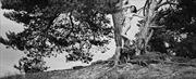 ella ladida 16 artistic nude photo by photographer jankarelkok