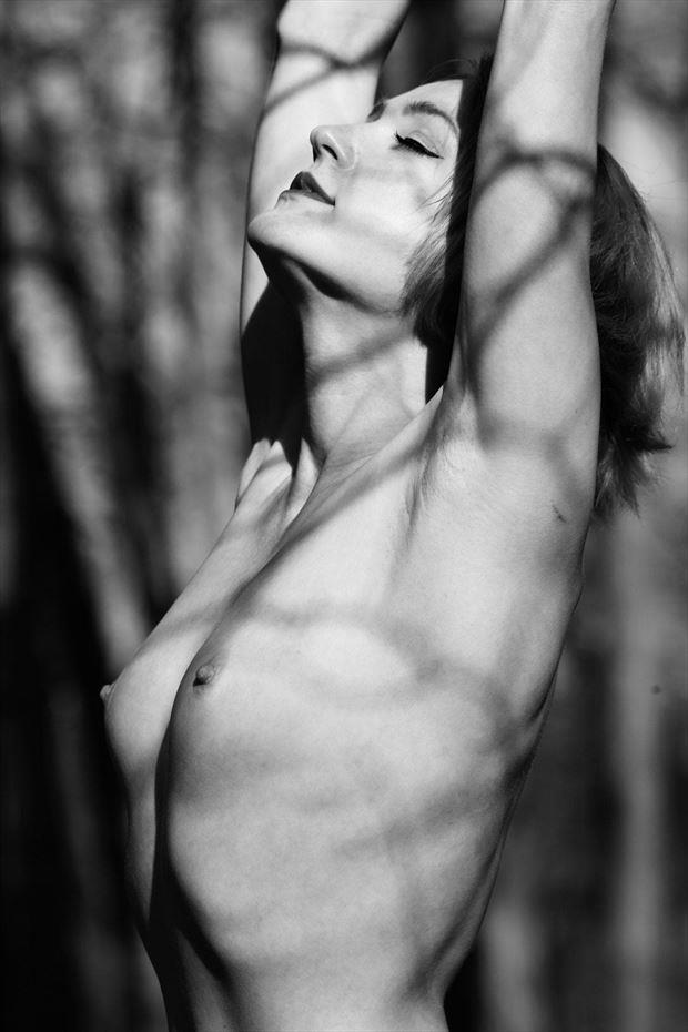 embracing the light artistic nude photo by model cali laine