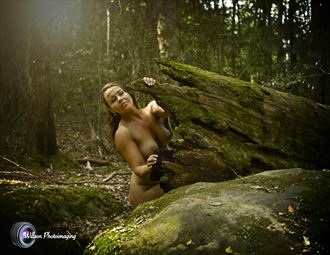 emma hiding her light nature photo by photographer willson photo