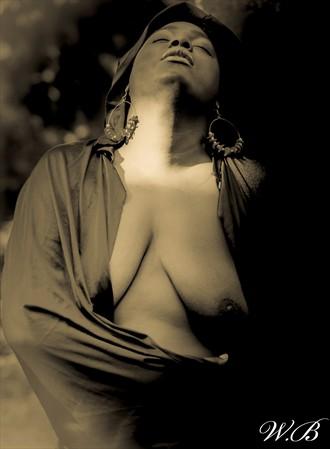 enigma Artistic Nude Photo by Photographer PlenitudePhotography