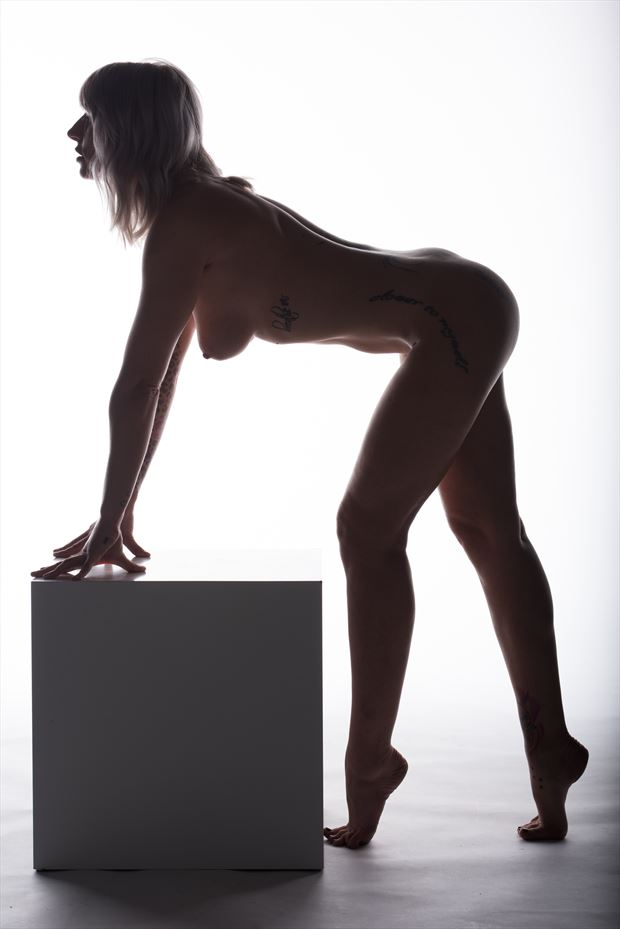 erotic and body curves artistic nude photo by photographer arcis