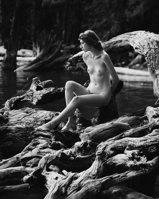 evolution with kate snig artistic nude photo by photographer robin burch