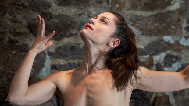 expression no 3 artistic nude photo by photographer aspiring imagery