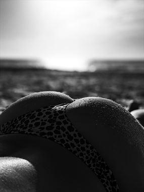 face down bikini photo by photographer dbeattyphotography