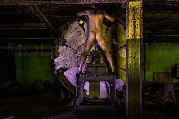 factory artistic nude artwork by model naked freedom