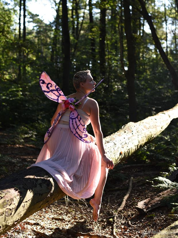 fairy cosplay photo by photographer jb modelwork