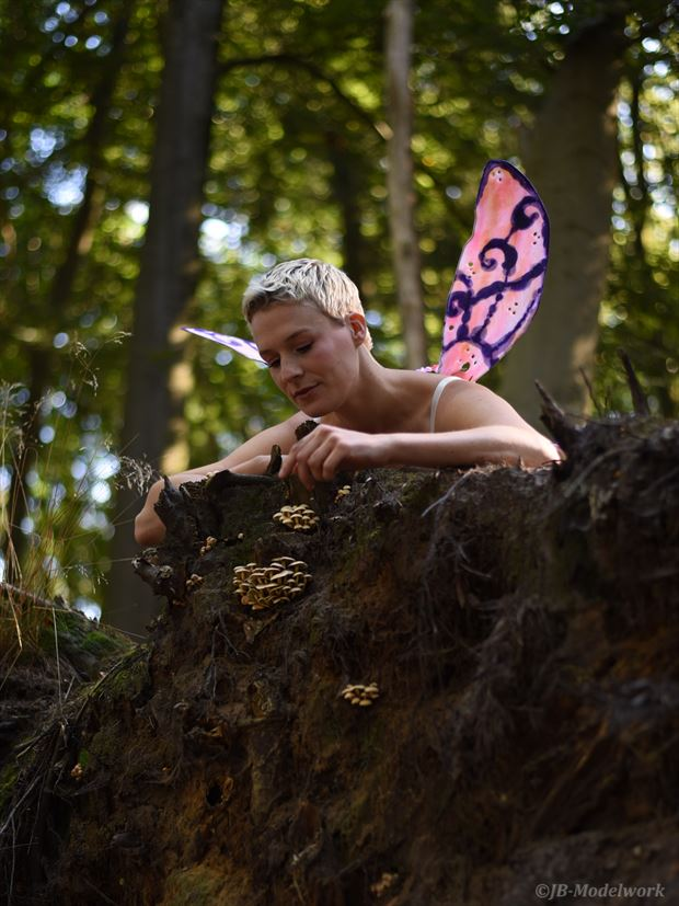 fairy nature photo by photographer jb modelwork