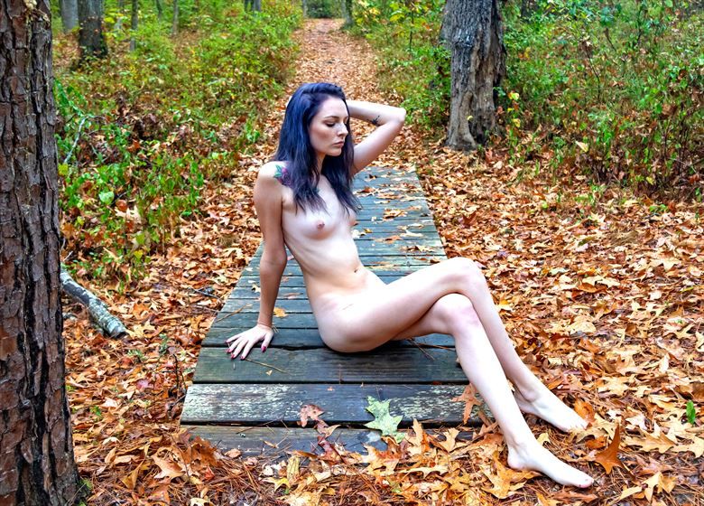 fall leaves with brittany 4 nature photo by photographer lamont s art works