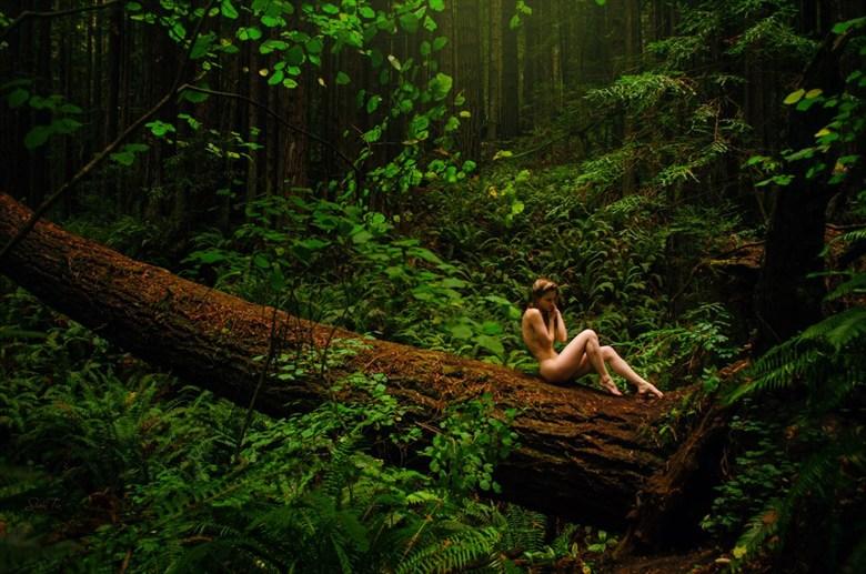fallen beauty Artistic Nude Photo by Model MelissaAnn