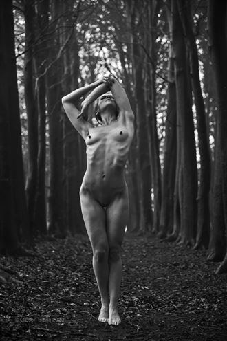 falmer east sussex artistic nude photo by photographer gibson
