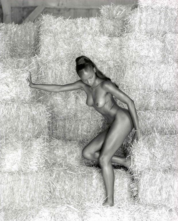fantaisie rurale 6 artistic nude photo by photographer dick