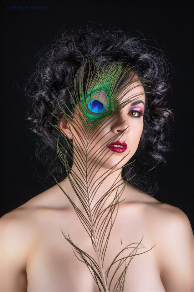 feather Surreal Photo by Photographer Dave Kelley Artistics