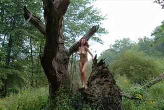 felicia grt swamp 08 artistic nude photo by photographer studio747