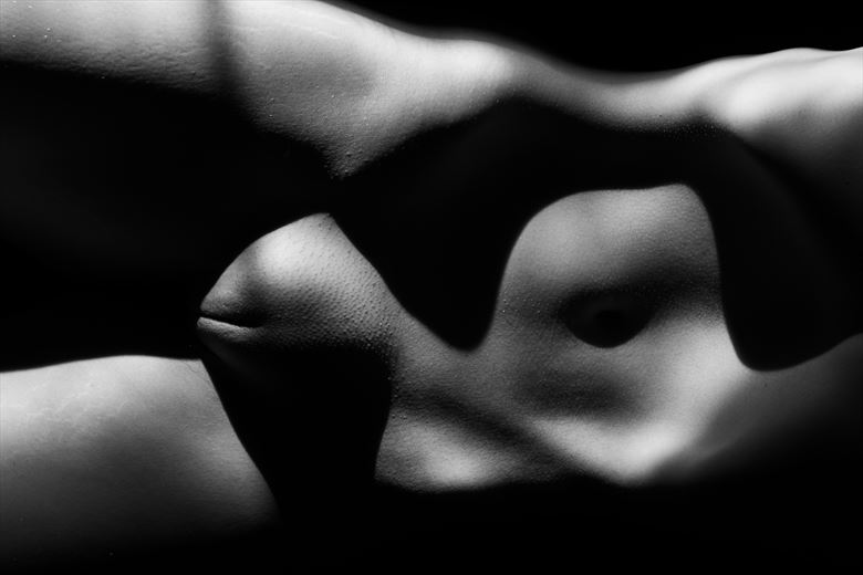 female shapes of beauty 2 artistic nude photo by photographer colin dixon