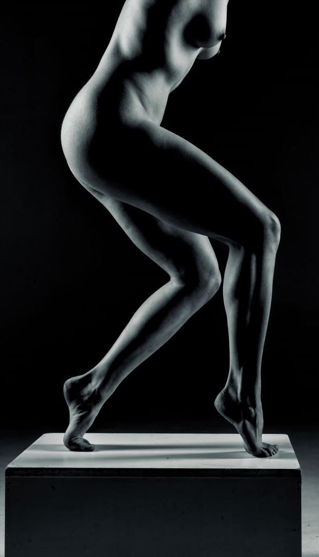 fine lines artistic nude photo by photographer dream digital photog