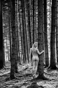 fir forest 1 Artistic Nude Photo by Photographer Thomas Bichler