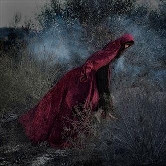 fleeing gamorah nature photo by photographer crystallynn