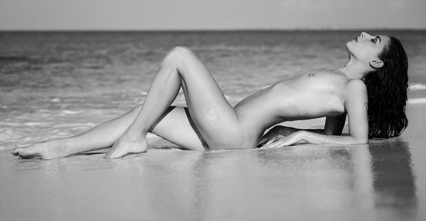 floofie in paradise artistic nude photo by photographer stromephoto