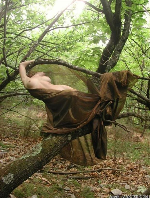 forest artistic nude photo by photographer joseph angilella auquier