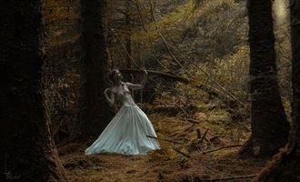 forest clearing nature photo by photographer kestrel