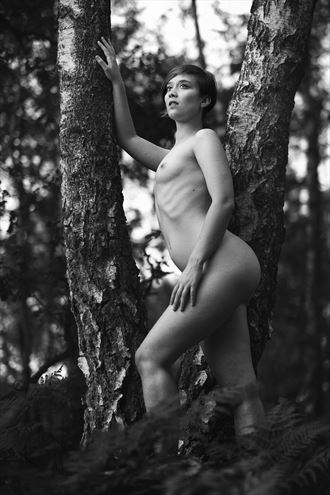 forest fern artistic nude artwork by photographer pegico_art