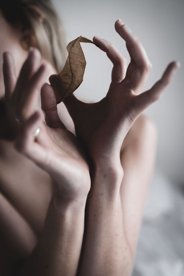 fragile leaf artistic nude artwork by photographer brendan louw