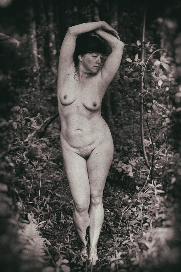 freedom of acceptance Nature Photo by Model Inner Essence