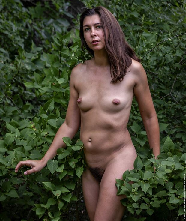 from the melissa series of the warren communications nude naturally portfolio artistic nude photo by photographer warrencommunications