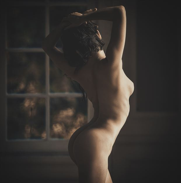 gabrielle in the great room 2 artistic nude photo by photographer dlevans