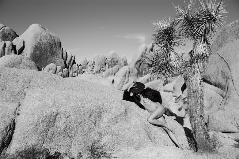 giddy up 1 artistic nude photo by photographer maiasphoto