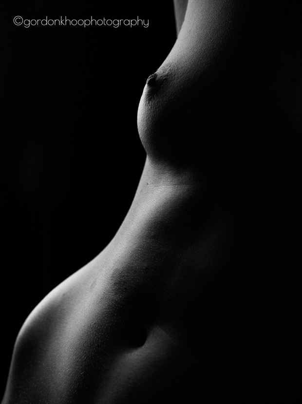 ginger rox bodyscape artistic nude photo by photographer gordonkhoophotography
