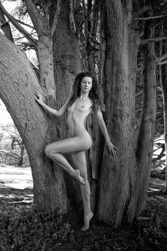 girl in the woods artistic nude photo by photographer jonathan c