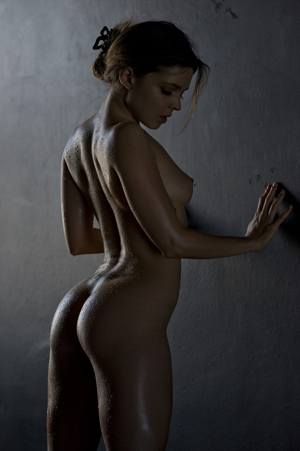 glisten b artistic nude artwork by photographer alan h bruce