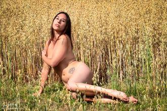 golden bed artistic nude photo by model iris suarez