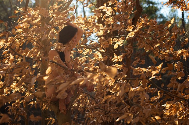 grandfolia (2013) Artistic Nude Photo by Photographer PhotoSmith