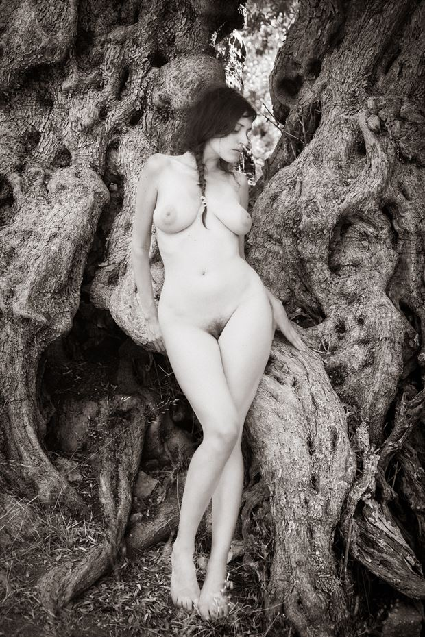 hamadryad artistic nude photo by photographer garden of the muses