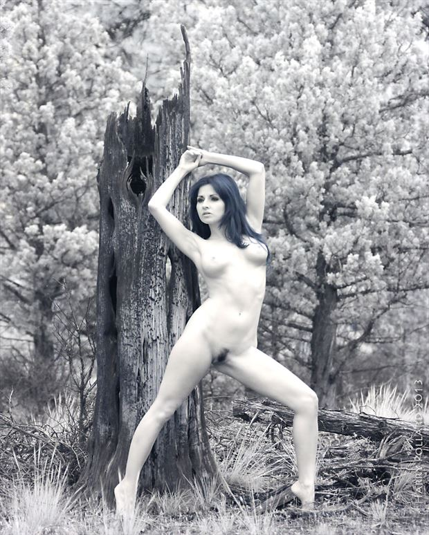 hanna at charred stump artistic nude photo by photographer shootist