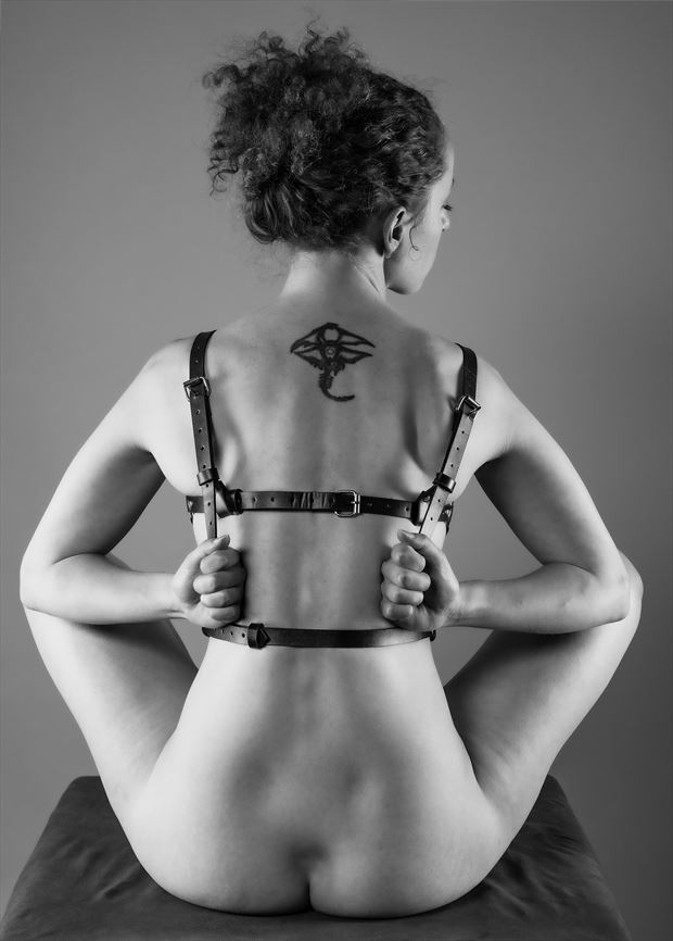 harness 2 resistance artistic nude photo by photographer gpstack