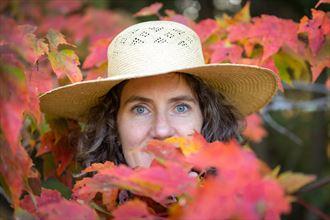 hat trick nature photo by photographer marshallart