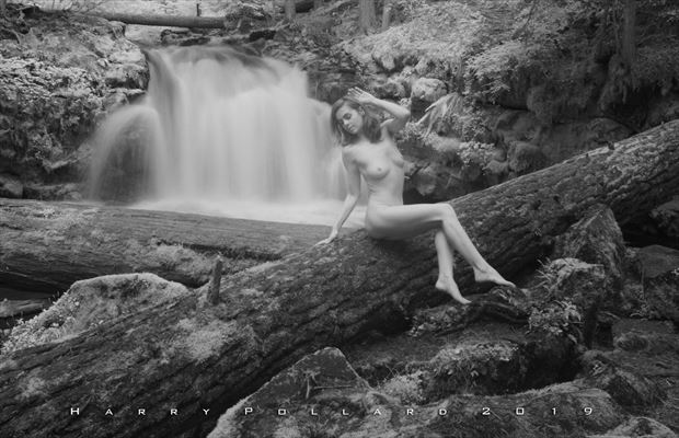helen at whitehorse artistic nude photo by photographer shootist