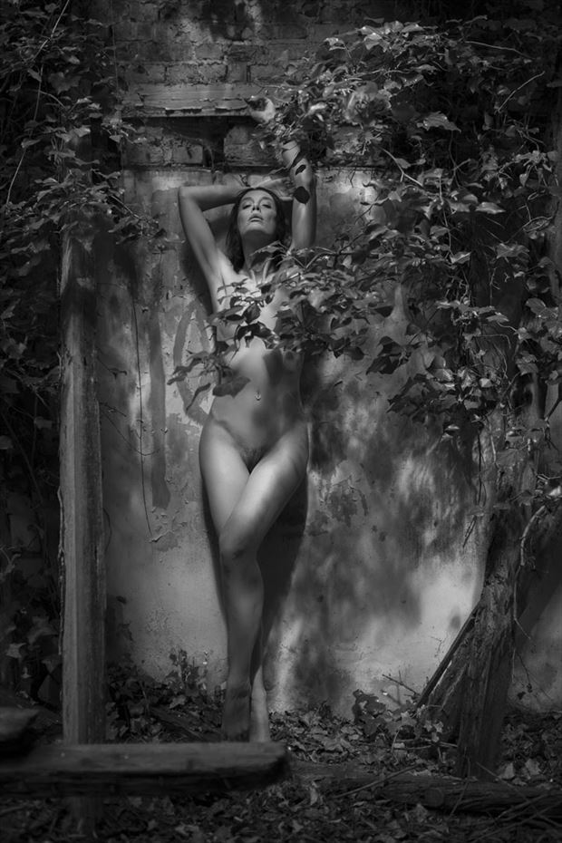 helen wykes artistic nude photo by photographer white tiger