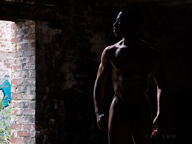 hiding in the shadows artistic nude photo by model matriix